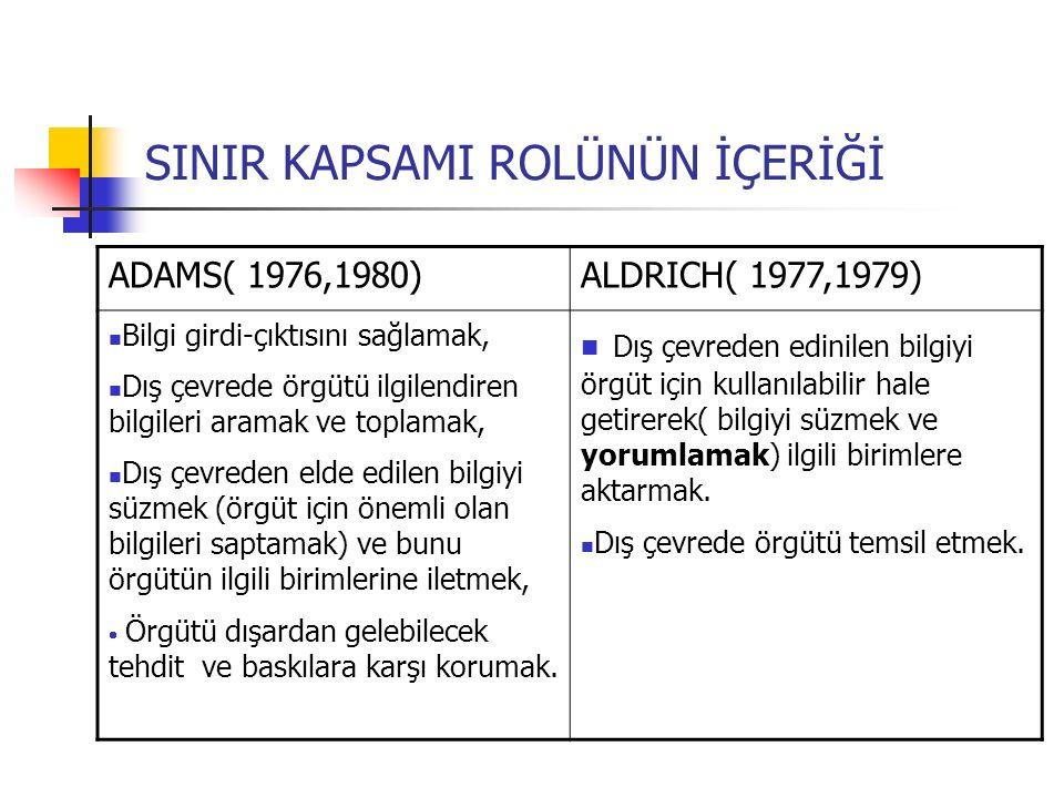 SINIR KAPSAMI ROLÜ MODELLERİ 2.Evrimsel Model (Russ,et.al.,1998) 1.
