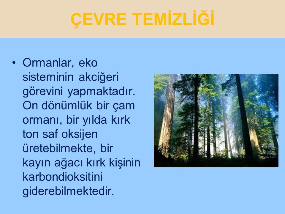 ÇEVRE TEMİZLİĞİ Dünya hayatının vazgeçilmez nimetlerinden biri de ağaç ve yeşilliktir.