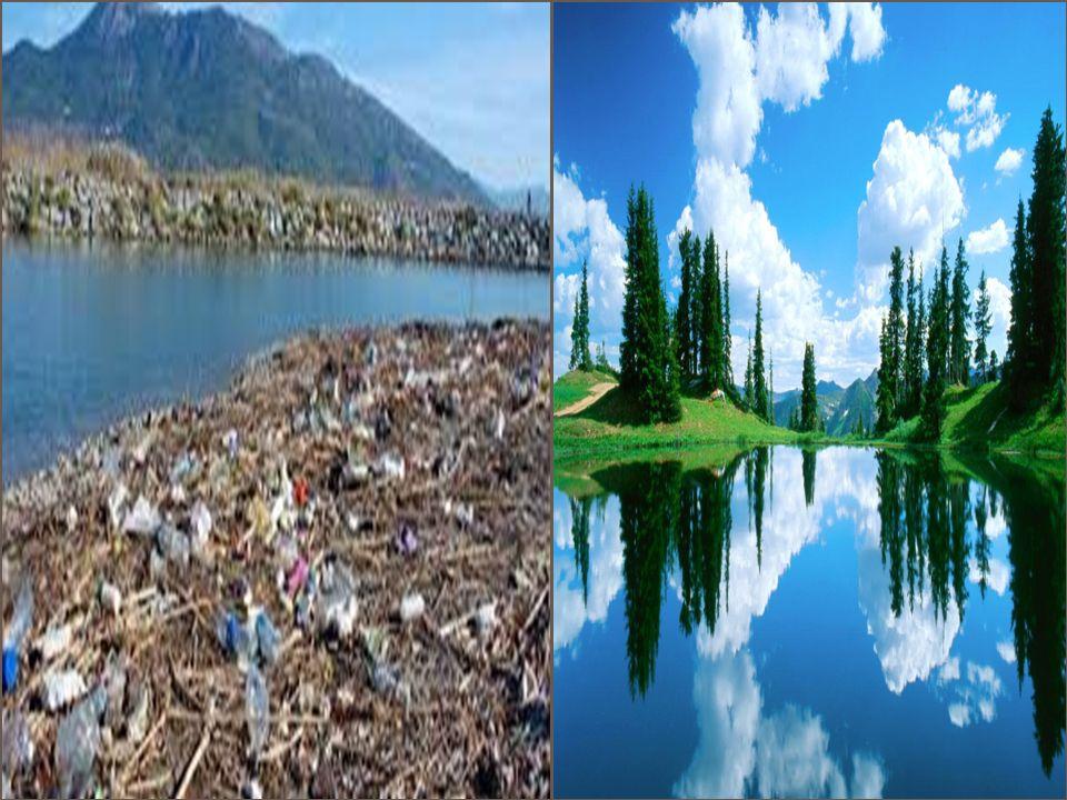 Çevreye zarar veren kişileri kibarca uyarmalıyız.