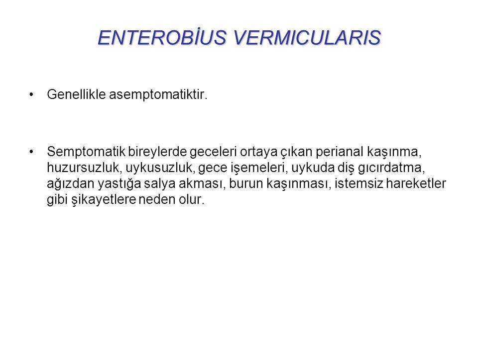 ENTEROBİUS VERMICULARIS Genellikle asemptomatiktir.