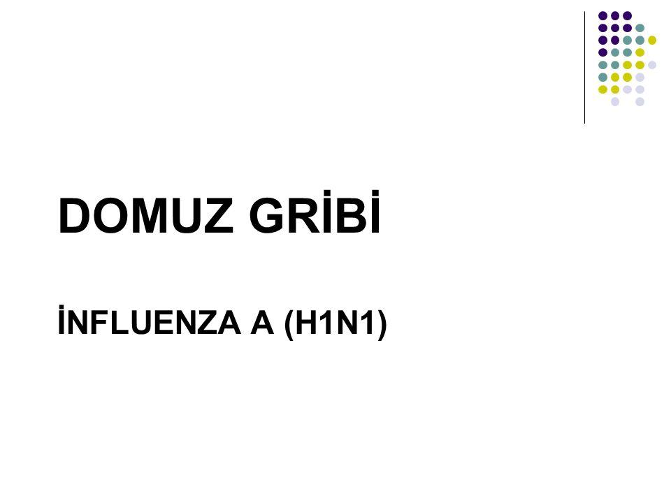 DOMUZ GRİBİ İNFLUENZA A (H1N1)