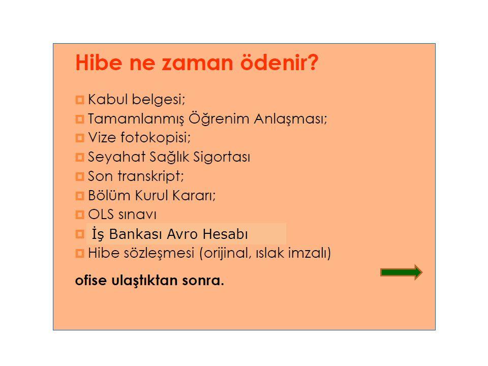 İş Bankası Avro Hesabı