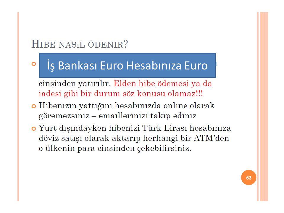 İş Bankası Euro Hesabınıza Euro