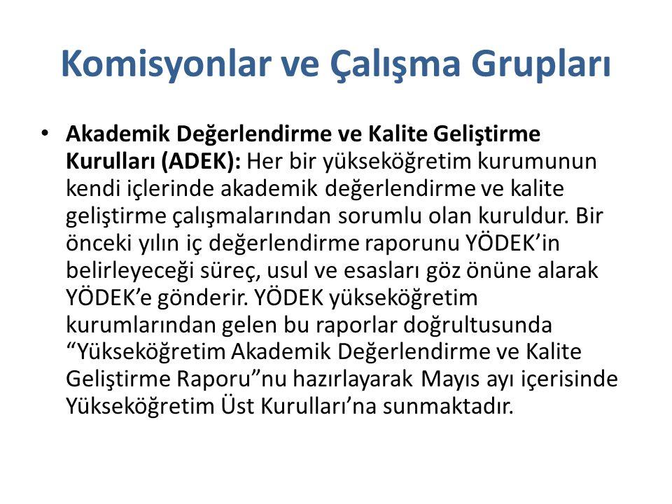 Komisyonlar ve Çalışma Grupları Yükseköğretim Yeterlilikler Komisyonu: Türkiye'de yükseköğretimde ulusal yeterlilikler çerçevesi oluşturulmasına yönelik olarak kurulan Yükseköğretim Yeterlilik Komisyonu çalışmalarını 04.02.2008 tarihine kadar sürdürmüştür.