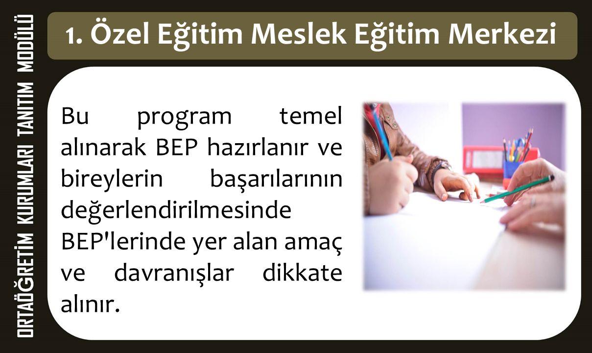 Bu program temel alınarak BEP hazırlanır ve bireylerin başarılarının değerlendirilmesinde BEP'lerinde yer alan amaç ve davranışlar dikkate alınır. 1.