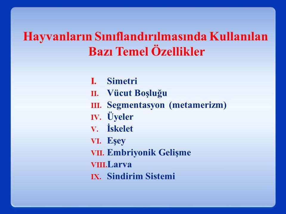 I.Simetri II. Vücut Boşluğu III. Segmentasyon (metamerizm) IV. Üyeler V. İskelet VI. Eşey VII. Embriyonik Gelişme VIII. Larva IX. Sindirim Sistemi Hay