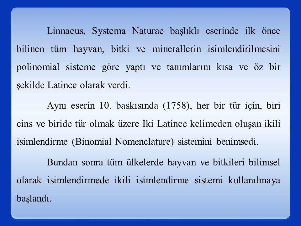 Linnaeus, Systema Naturae başlıklı eserinde ilk önce bilinen tüm hayvan, bitki ve minerallerin isimlendirilmesini polinomial sisteme göre yaptı ve tan