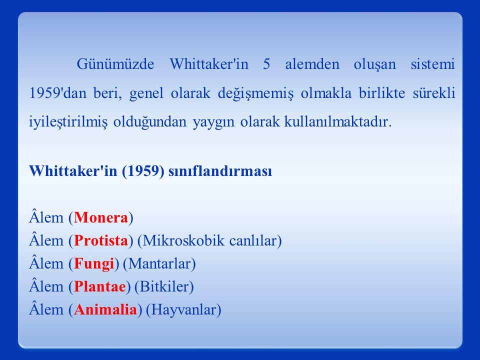 Günümüzde Whittaker'in 5 alemden oluşan sistemi 1959'dan beri, genel olarak değişmemiş olmakla birlikte sürekli iyileştirilmiş olduğundan yaygın olara