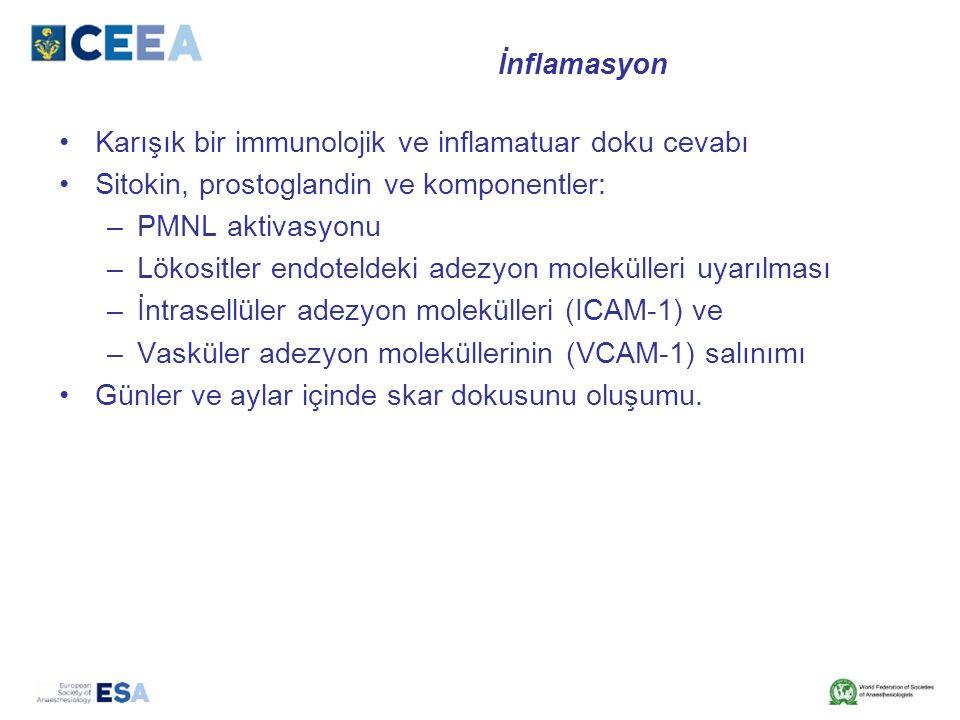 İnflamasyon Karışık bir immunolojik ve inflamatuar doku cevabı Sitokin, prostoglandin ve komponentler: –PMNL aktivasyonu –Lökositler endoteldeki adezyon molekülleri uyarılması –İntrasellüler adezyon molekülleri (ICAM-1) ve –Vasküler adezyon moleküllerinin (VCAM-1) salınımı Günler ve aylar içinde skar dokusunu oluşumu.