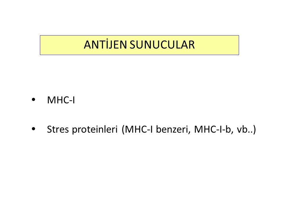  MHC-I  Stres proteinleri (MHC-I benzeri, MHC-I-b, vb..) ANTİJEN SUNUCULAR