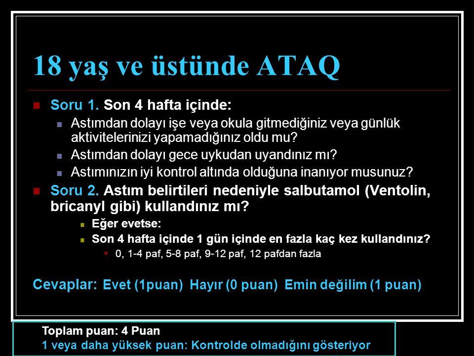 18 yaş ve üstünde ATAQ Soru 1.