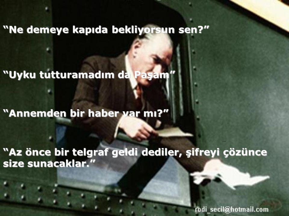 Ali Çavuş, anlattığına göre birden yerinden sıçramış.