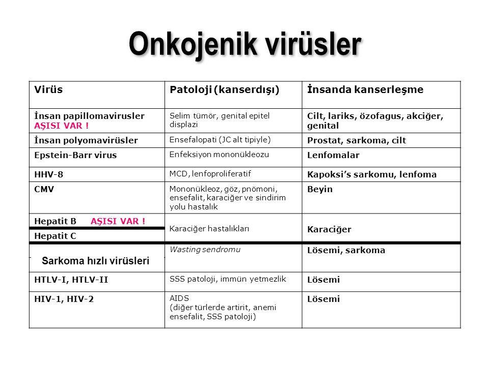 VirüsPatoloji (kanserdışı)İnsanda kanserleşme İnsan papillomavirusler AŞISI VAR ! Selim tümör, genital epitel displazi Cilt, lariks, özofagus, akciğer
