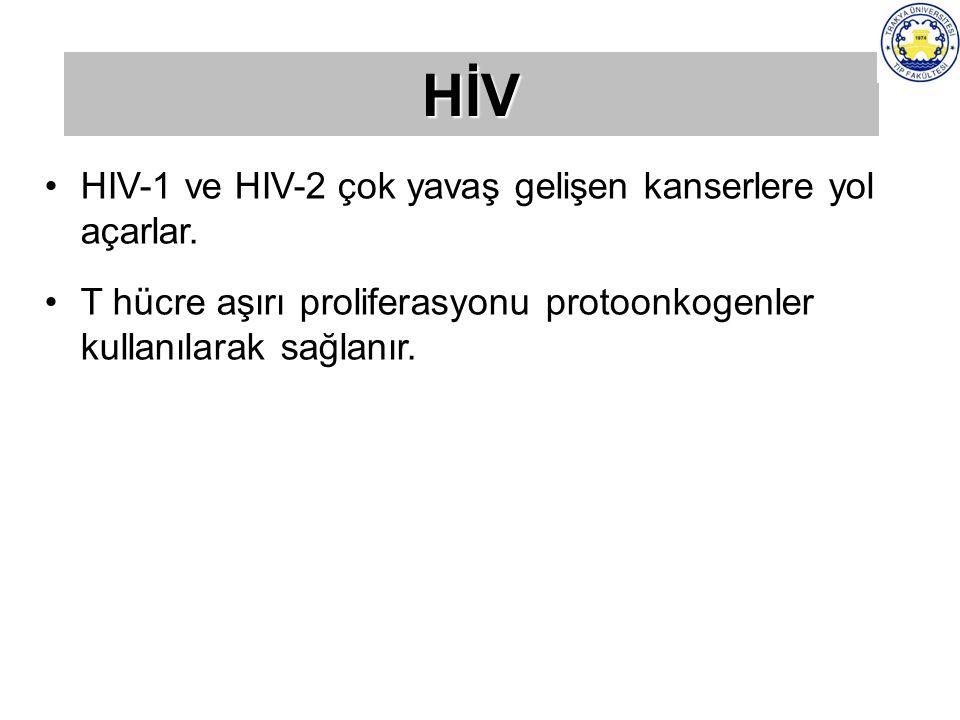 HIV-1 ve HIV-2 çok yavaş gelişen kanserlere yol açarlar. T hücre aşırı proliferasyonu protoonkogenler kullanılarak sağlanır. HİV