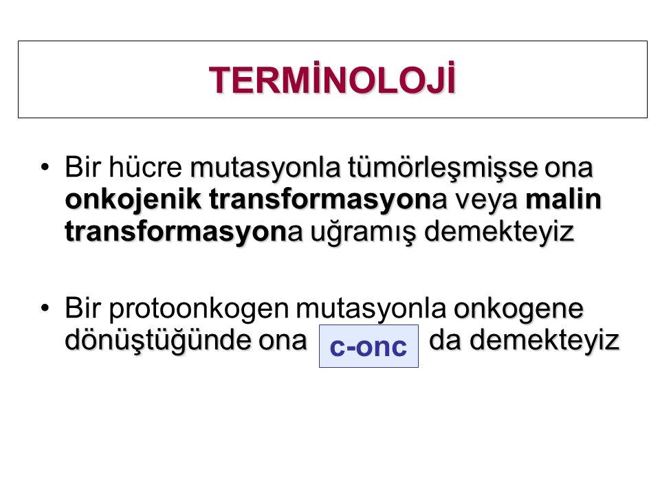 TERMİNOLOJİ mutasyonla tümörleşmişse ona onkojenik transformasyona veya malin transformasyona uğramış demekteyizBir hücre mutasyonla tümörleşmişse ona