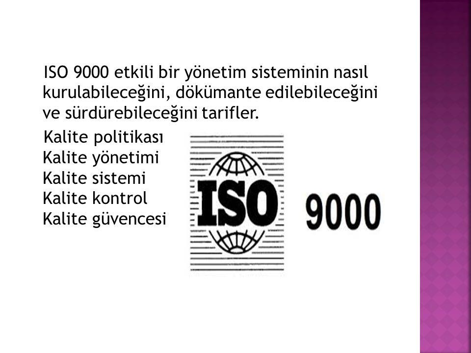 ISO 9000 etkili bir yönetim sisteminin nasıl kurulabileceğini, dökümante edilebileceğini ve sürdürebileceğini tarifler.