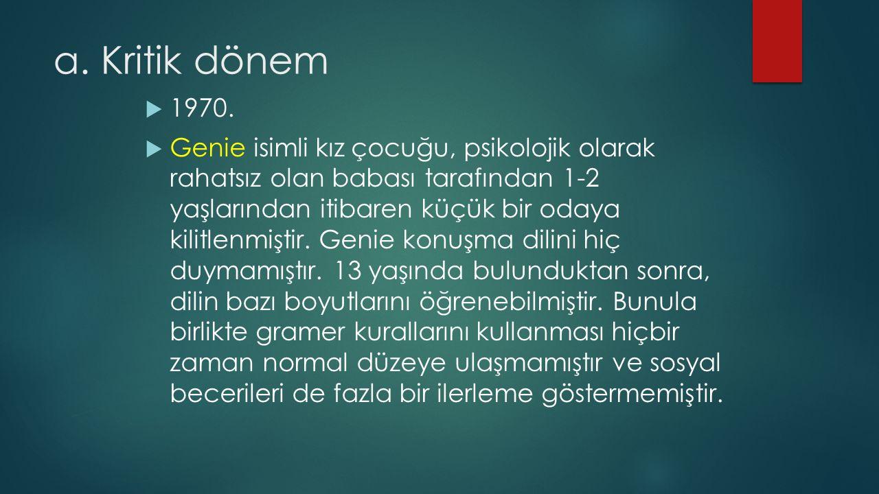 a. Kritik dönem  1970.