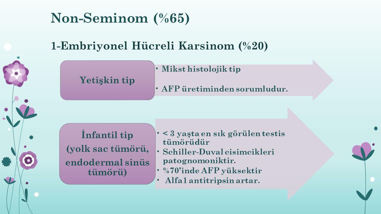 1-Embriyonel Hücreli Karsinom (%20) Mikst histolojik tip AFP üretiminden sorumludur. Yetişkin tip < 3 yaşta en sık görülen testis tümörüdür Schiller-D