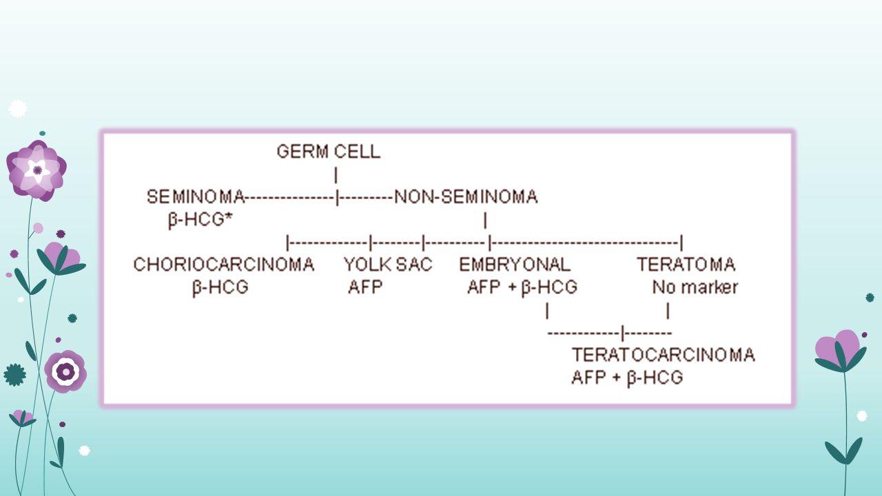 Non Seminom-Tedavi Erken Evre (EVRE 1) Retroperitoneal LN Diseksiyonu İzlem Tedavisi (düşük riskli hastalarda) Primer Kemoterapi (yüksek riskli hastalarda : anjiyo-lenfatik invazyon) İleri Evre (EVRE > 2B) Kemoterapi Non-Seminom : Kemosensitif
