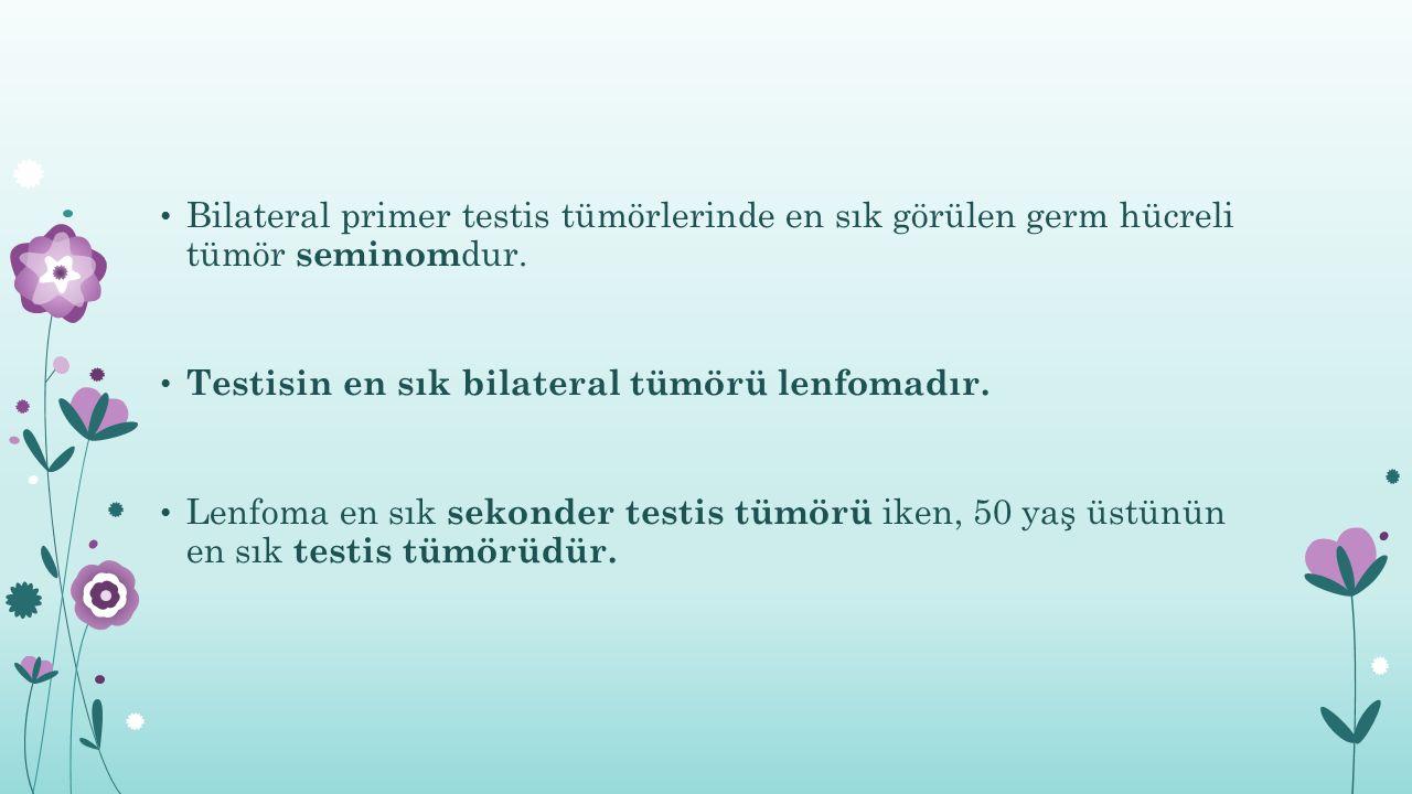 Bilateral primer testis tümörlerinde en sık görülen germ hücreli tümör seminom dur. Testisin en sık bilateral tümörü lenfomadır. Lenfoma en sık sekond