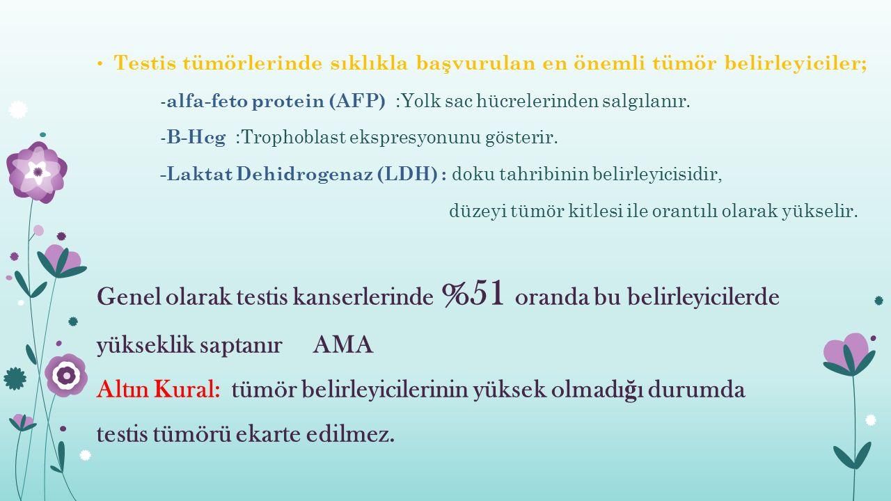 Testis tümörlerinde sıklıkla başvurulan en önemli tümör belirleyiciler; - alfa-feto protein (AFP) :Yolk sac hücrelerinden salgılanır. - B-Hcg :Trophob