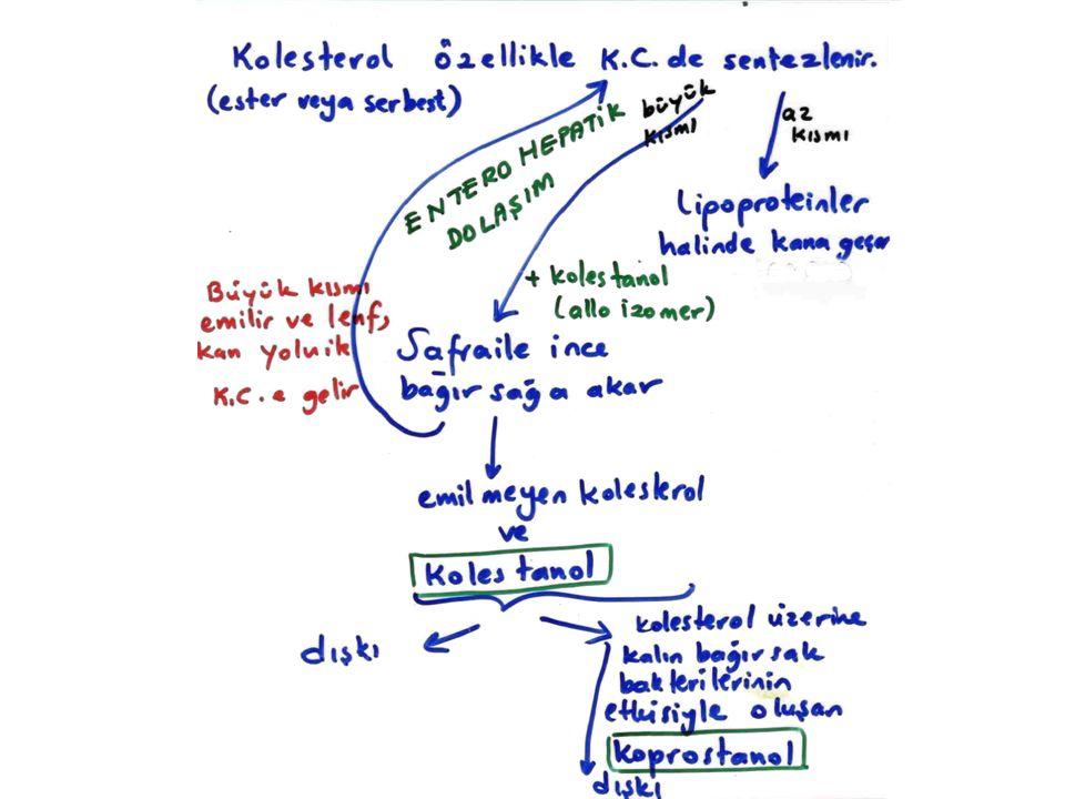 Adrenolökodistrofi ve Lorenzonun yağı: Adrenolökodistrofi, seyrek görülen (1/25,000), X genine bağlı, hücrenin peroksizom zarındaki adrenolökodistrofi proteininin eksikliğinden kaynaklanan bir hastalıktır.