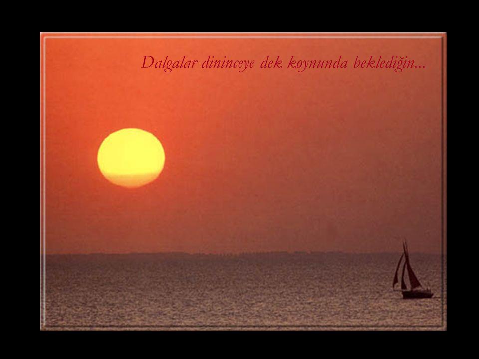 Sonra açık denizlere uğurlamalı seni... Geri döneceğin günü beklemek umuduyla...