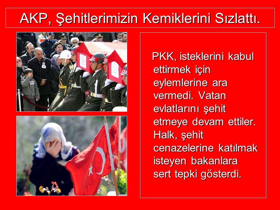 AKP, Şehitlerimizin Kemiklerini Sızlattı. PKK, isteklerini kabul ettirmek için eylemlerine ara vermedi. Vatan evlatlarını şehit etmeye devam ettiler.
