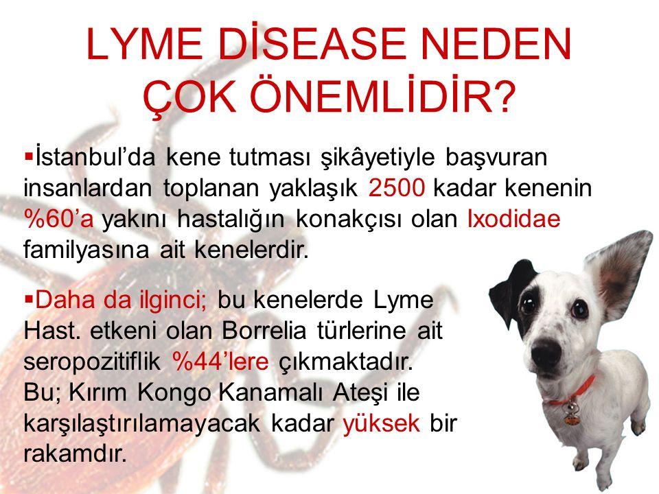  Yapılan araştırmalara göre; köpeklerin Lyme'a yakalanıp, belirtileri göstermeden sadece taşıyıcı olabildiği tespit edilmiştir.