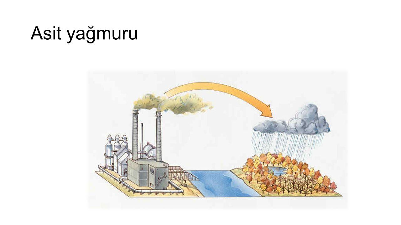  Fosil yakıtlarda bulunan Co2 atmosferde sera etkisi yaratır, Hava ve okyanusların uzun süreli ortalama sıcaklığında artışlara, tropik bölgelerde buharlaşmanın artmasına ve buzulların erimeye başlamasına yol açmaktadır.