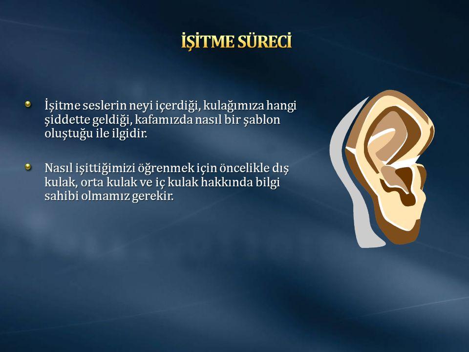 Kulak 3 ana bölümden oluşur. Dış kulak, orta kulak ve iç kulak.
