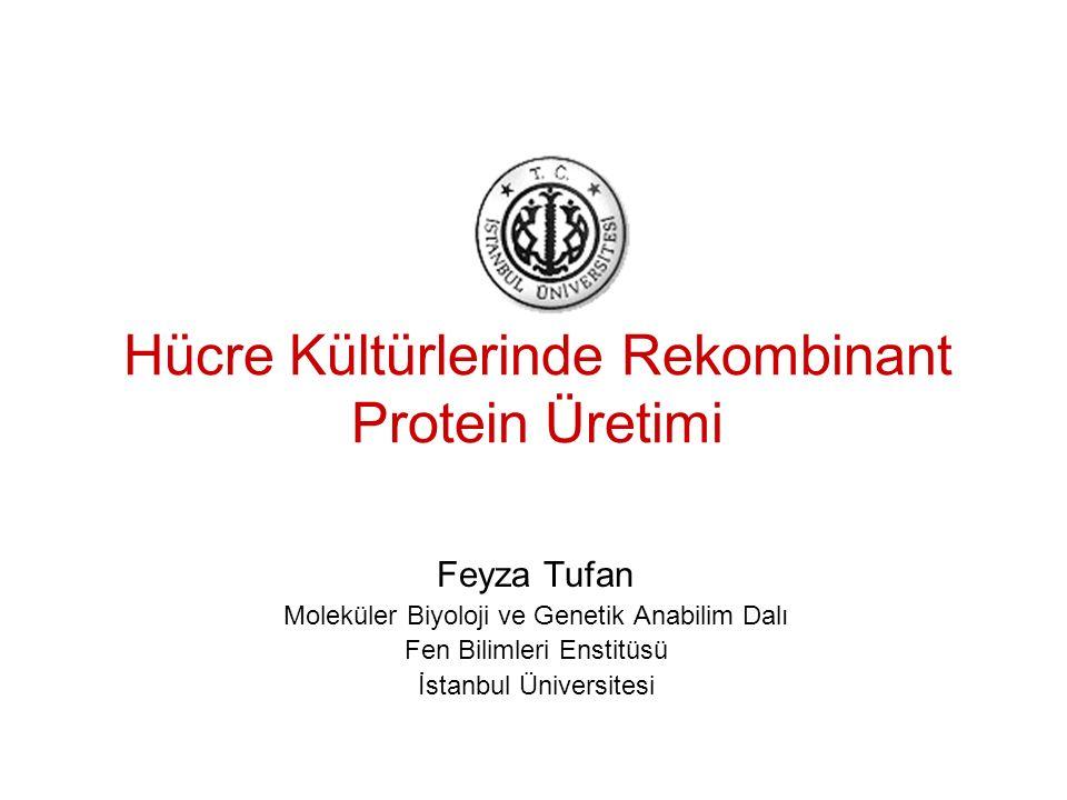 2 Bitki Hücre Kültürü İn vitro bitki kültürüyle üretilen iki ana tip ürün vardır: Sekonder metabolit: Ticari olarak bulunanlar; ginseng saponin, shikonin, berberine, paclitaxel (taxol) v.s.