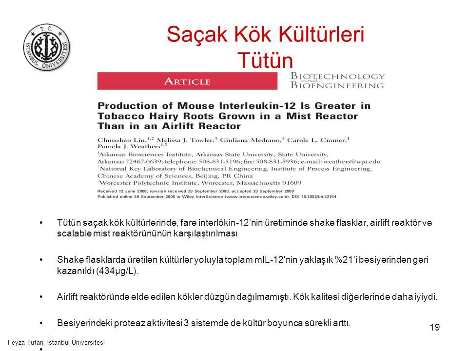 20 Saçak Kök Kültürleri Patates Feyza Tufan, İstanbul Üniversitesi HBsAg nin patates saçak köklerinde ekspresyonuyla ilgili ilk rapor Hepatit B yüzey antijeni için (HBsAg) iki farklı ekspresyon kasedi kullanılarak transgenik patates bitkisi geliştirildi.