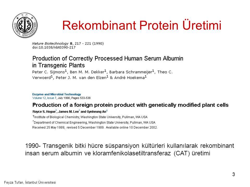 4 Rekombinant protein üretiminde, bitki temelli üretim sistemlerinin kullanılmasının önemli üstünlükleri: Yüksek derecede gelişmiş ökaryotik sistem Post-translasyonel modifikasyonların gerçekleşmesi Düşük maaliyetli üretim Güvenilirlik Etik problem bulunmaması Feyza Tufan, İstanbul Üniversitesi
