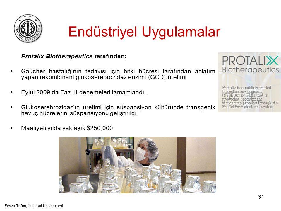 32 Endüstriyel Uygulamalar Phyton Biotech, ticari olarak, bitki hücre süspansiyon kültürü kullanarak antikanser sekonder metabolit olan paclitaxel'i üretmekte Feyza Tufan, İstanbul Üniversitesi