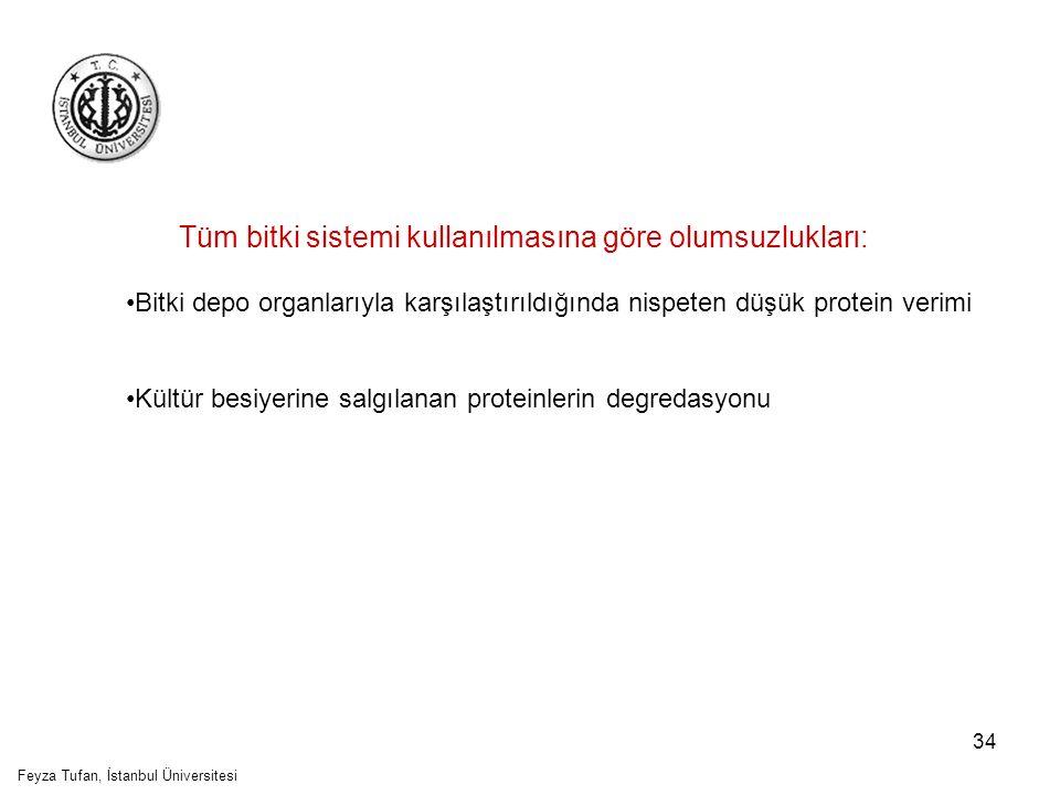 35 Tüm bitki sistemi kullanımının olumsuzlukları: Tarla bitkilerinde, tarım ilaçları ve gübrelemekten kaynaklanan kontaminasyon ihtimali Değişken kültivasyon koşulları (hava, toprak içeriği, diğer organizmalarla etkileşim) Çevrede transgenik ekinin etkisi- transgen kaçışı ihtimali- rekombinant ürünle çevresel kontaminasyon Transgenik bitki üretimi daha fazla zaman gerektirmekte Feyza Tufan, İstanbul Üniversitesi