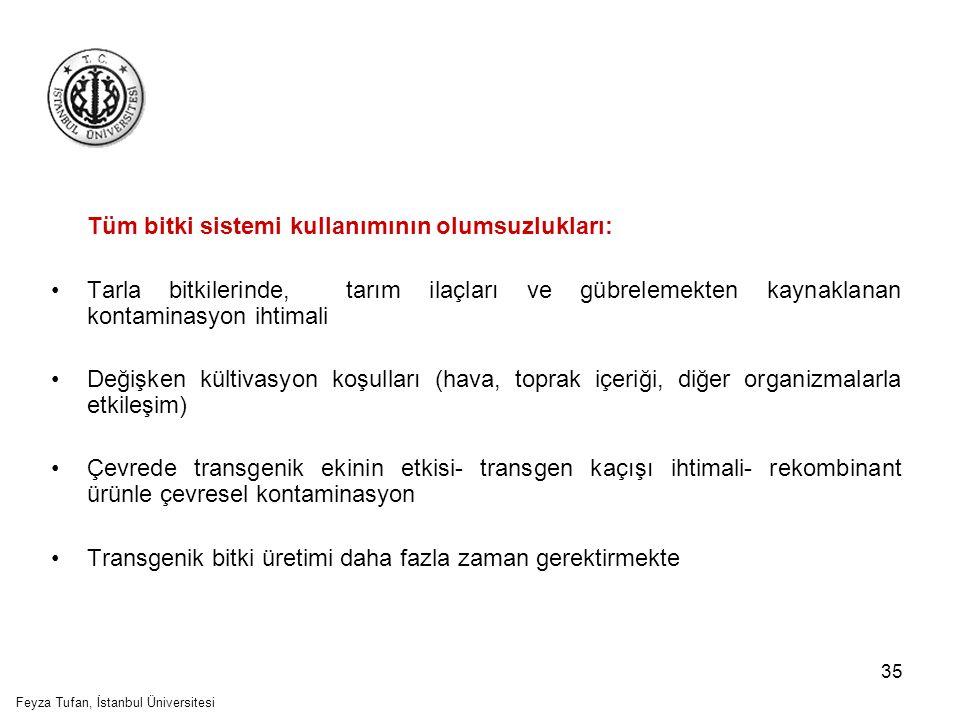 36 Feyza Tufan, İstanbul Üniversitesi
