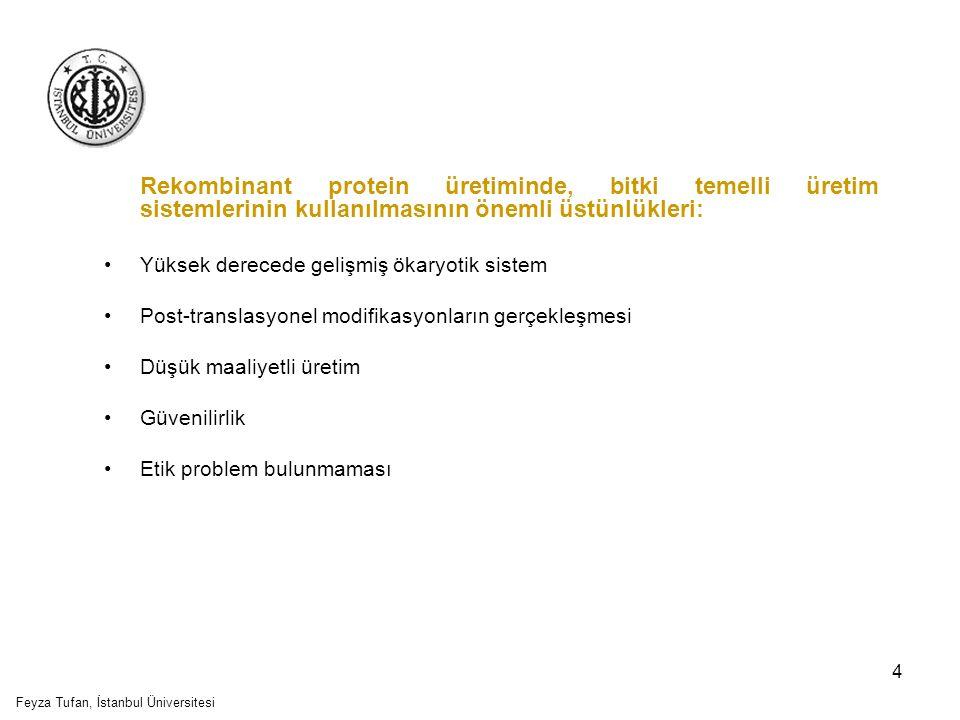 5 Bitki temelli üretim sistemlerinin olumsuz yönleri: Bitkilerde sentezlenen N-glikan yapısının memelilerle aynı olmaması Yavaş büyüme oranı Düşük protein üretim seviyeleri Somaklonal varyasyon Biyokimyasal ve genetik kararsızlık Kapasiteyi artırmadaki zorluklar Feyza Tufan, İstanbul Üniversitesi