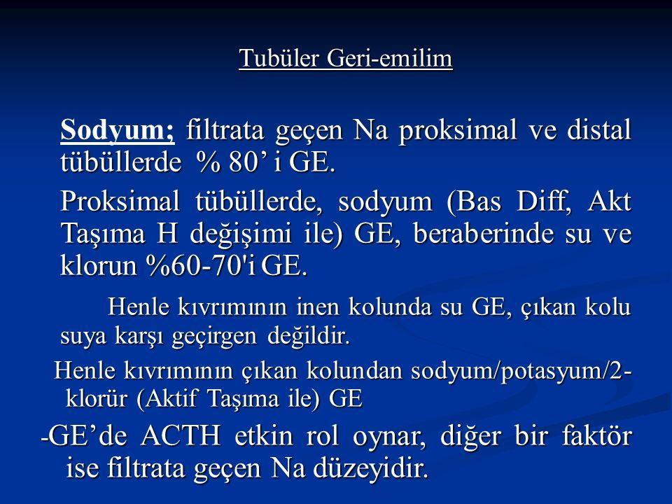 Tubüler Geri-emilim filtrata geçen Na proksimal ve distal tübüllerde % 80' i GE. Sodyum; filtrata geçen Na proksimal ve distal tübüllerde % 80' i GE.