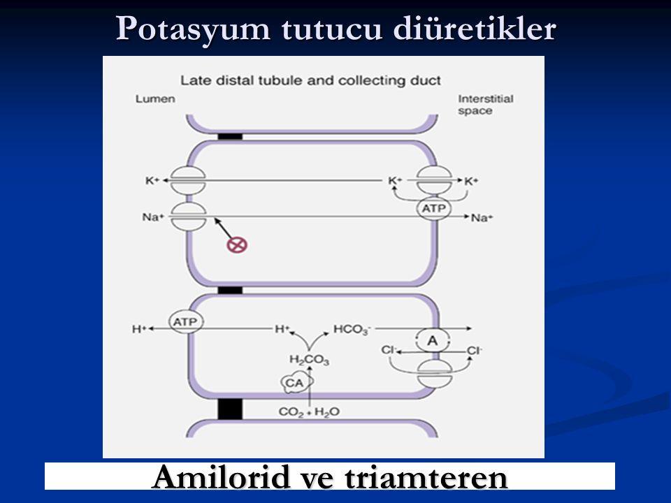 Potasyum tutucu diüretikler Amilorid ve triamteren