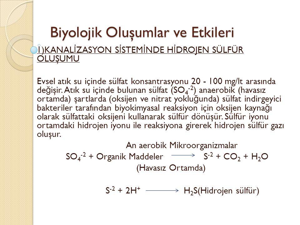 Biyolojik Oluşumlar ve Etkileri 1)KANAL İ ZASYON S İ STEM İ NDE H İ DROJEN SÜLFÜR OLUŞUMU Evsel atık su içinde sülfat konsantrasyonu 20 - 100 mg/lt arasında de ğ işir.