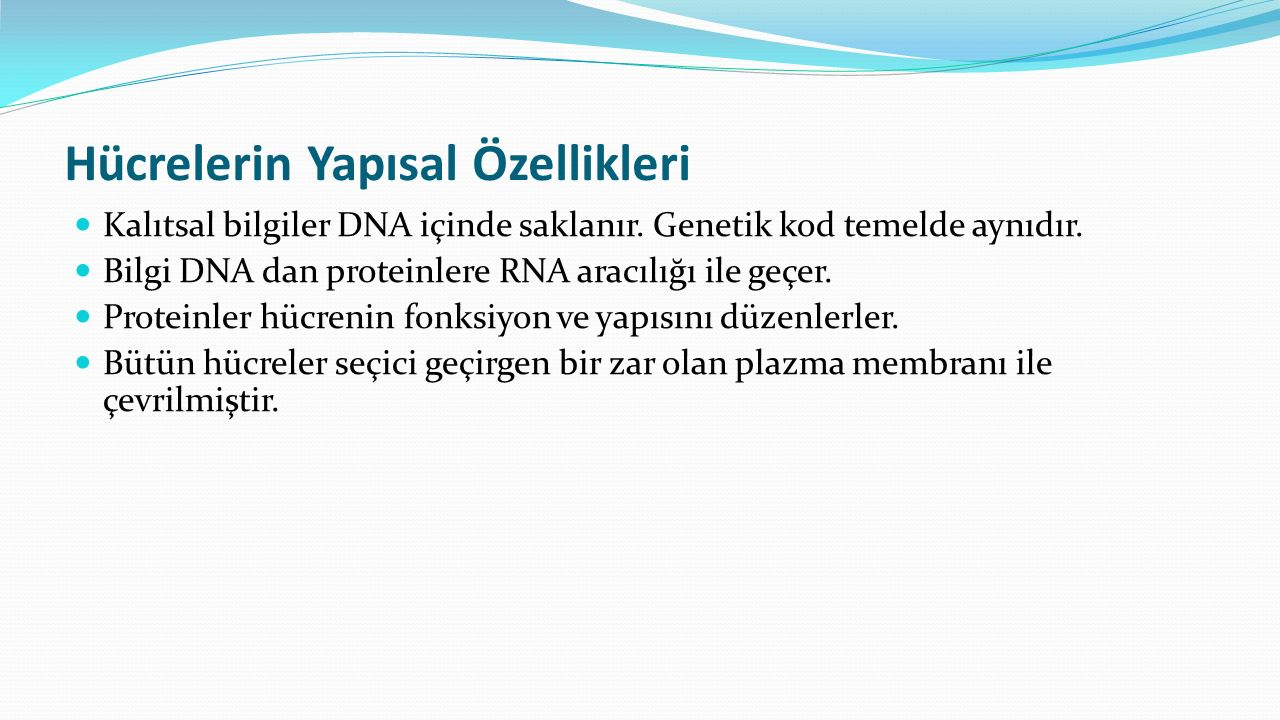 Hücrelerin Yapısal Özellikleri Kalıtsal bilgiler DNA içinde saklanır. Genetik kod temelde aynıdır. Bilgi DNA dan proteinlere RNA aracılığı ile geçer.