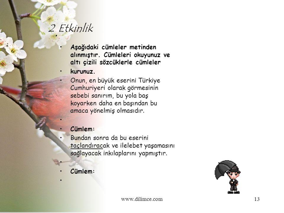 www.dilimce.com13 2. Etkinlik Aşağıdaki cümleler metinden alınmıştır.