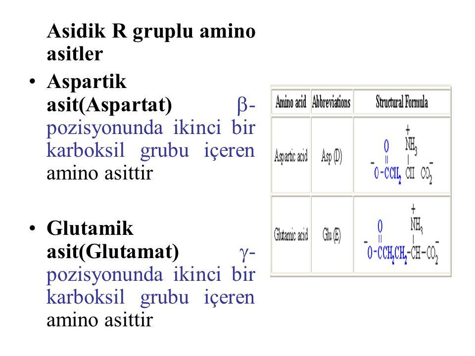 Asidik R gruplu amino asitler Aspartik asit(Aspartat)  - pozisyonunda ikinci bir karboksil grubu içeren amino asittir Glutamik asit(Glutamat)  - pozisyonunda ikinci bir karboksil grubu içeren amino asittir