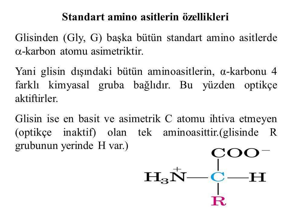 Standart amino asitlerin özellikleri Glisinden (Gly, G) başka bütün standart amino asitlerde  -karbon atomu asimetriktir. Yani glisin dışındaki bütün