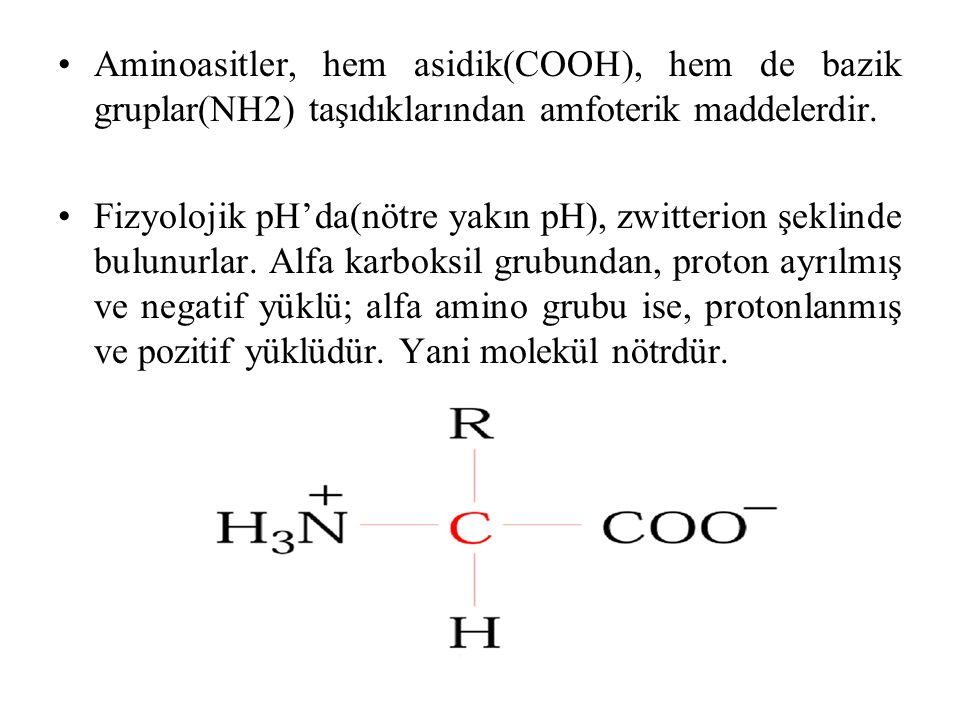 Aminoasitler, hem asidik(COOH), hem de bazik gruplar(NH2) taşıdıklarından amfoterik maddelerdir. Fizyolojik pH'da(nötre yakın pH), zwitterion şeklinde