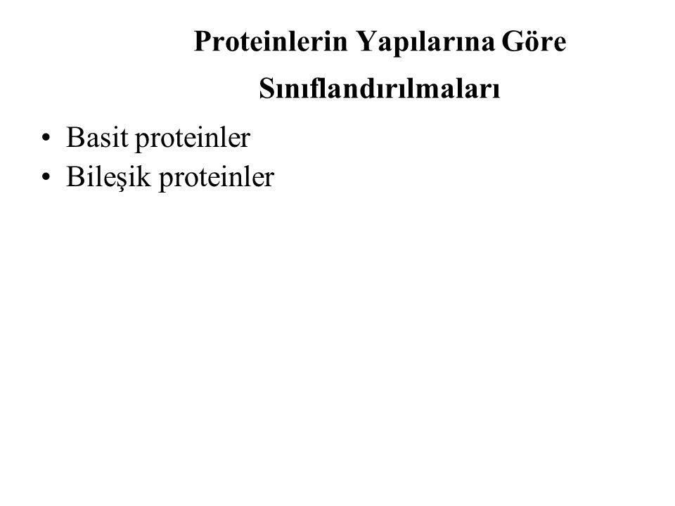 Proteinlerin Yapılarına Göre Sınıflandırılmaları Basit proteinler Bileşik proteinler
