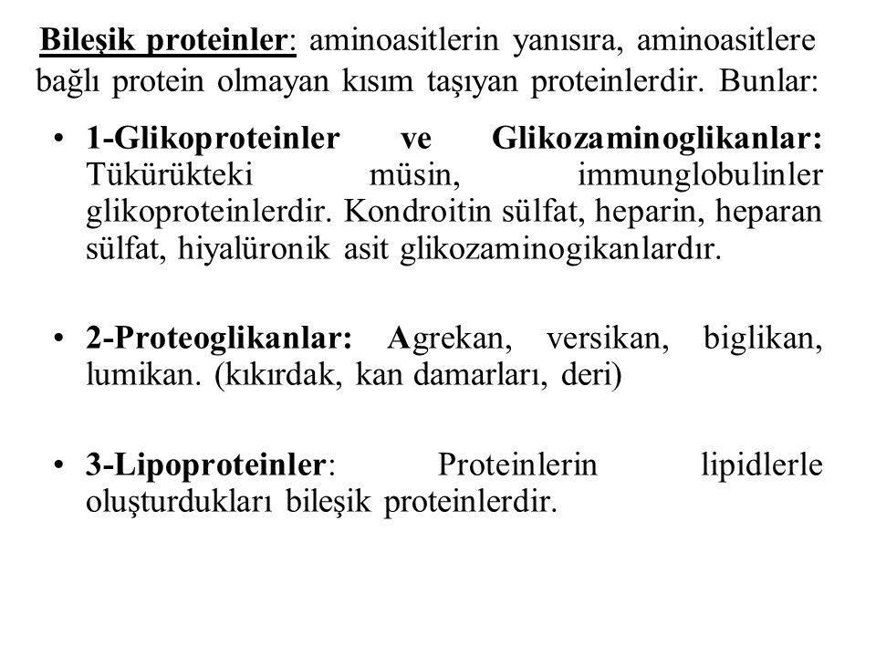 Bileşik proteinler: aminoasitlerin yanısıra, aminoasitlere bağlı protein olmayan kısım taşıyan proteinlerdir. Bunlar: 1-Glikoproteinler ve Glikozamino