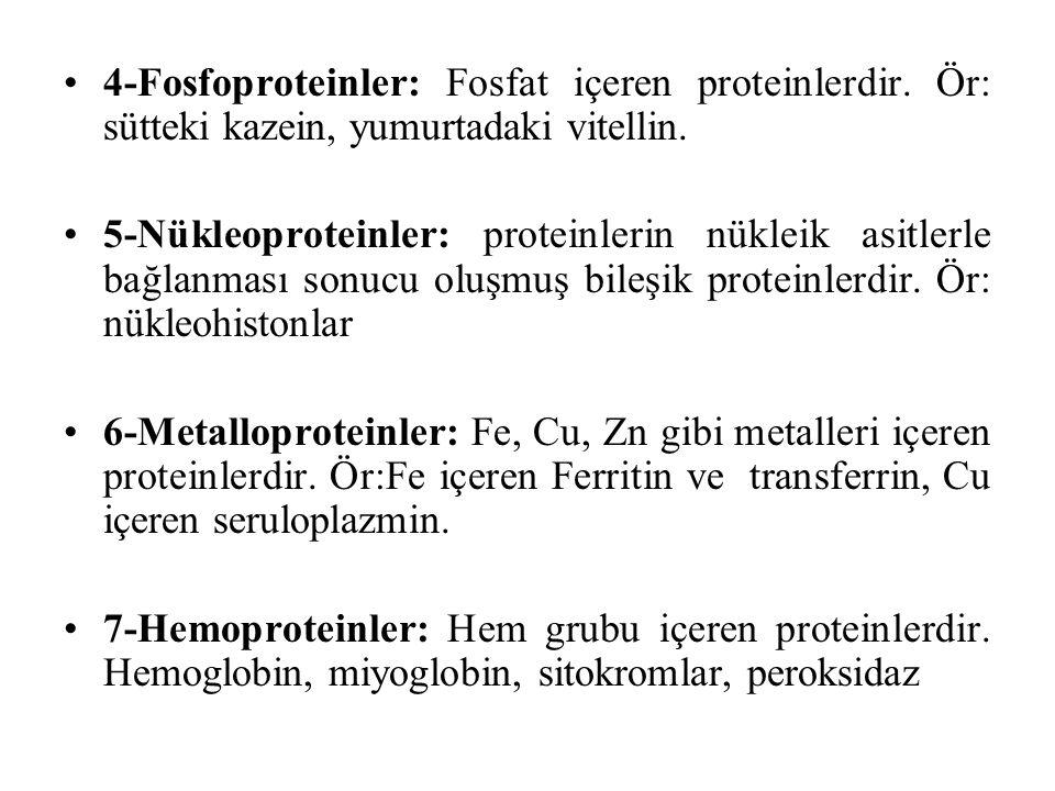 4-Fosfoproteinler: Fosfat içeren proteinlerdir. Ör: sütteki kazein, yumurtadaki vitellin. 5-Nükleoproteinler: proteinlerin nükleik asitlerle bağlanmas