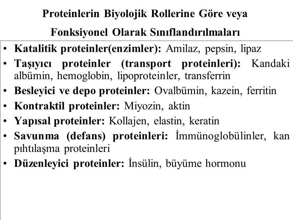 Proteinlerin Biyolojik Rollerine Göre veya Fonksiyonel Olarak Sınıflandırılmaları Katalitik proteinler(enzimler): Amilaz, pepsin, lipaz Taşıyıcı proteinler (transport proteinleri): Kandaki albümin, hemoglobin, lipoproteinler, transferrin Besleyici ve depo proteinler: Ovalbümin, kazein, ferritin Kontraktil proteinler: Miyozin, aktin Yapısal proteinler: Kollajen, elastin, keratin Savunma (defans) proteinleri: İmmünoglobülinler, kan pıhtılaşma proteinleri Düzenleyici proteinler: İnsülin, büyüme hormonu